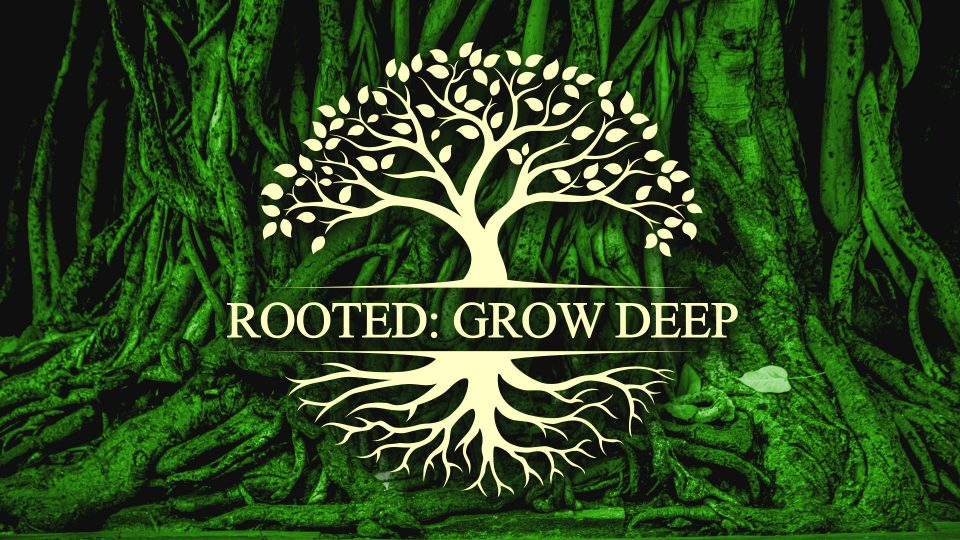 Rooted Series